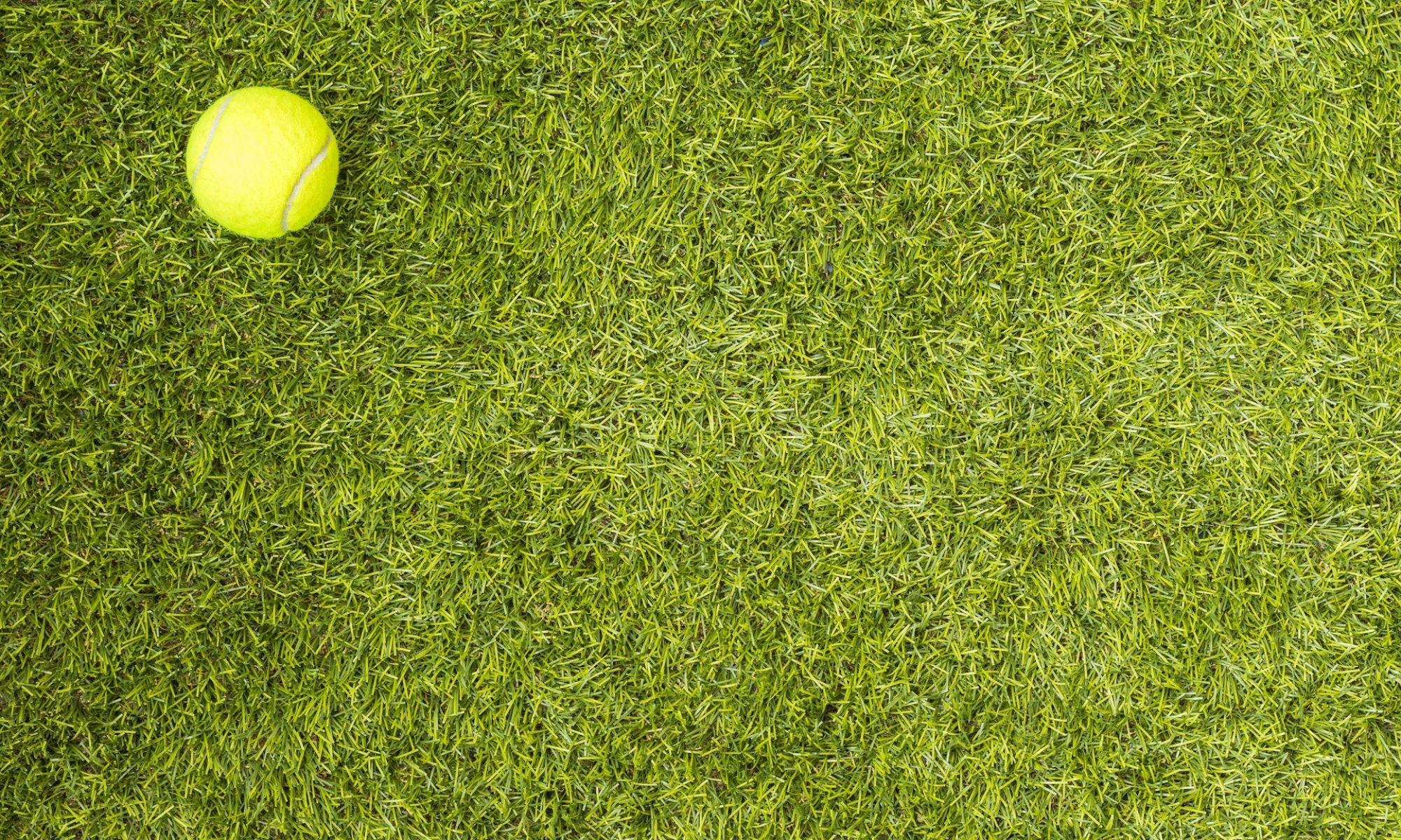 Lekcje tenisa ziemnego